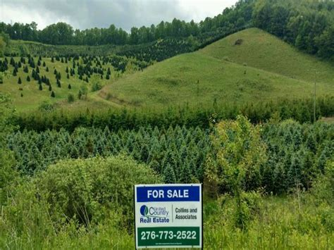 christmas tree farm for sale expired acreage tree farm farm for sale of wilson grayson county