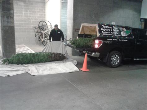 christmas tree delivery chicago pdx tree delivery photo album