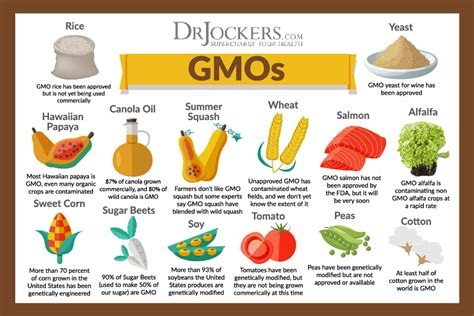 7 simple ways to avoid gmos 7 simple ways to avoid gmos and improve your health