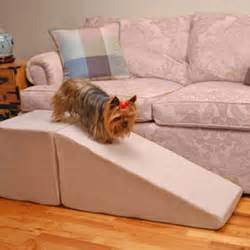 Dachshund Stairs Or Ramp by Ramp Training For The Ivdd Community