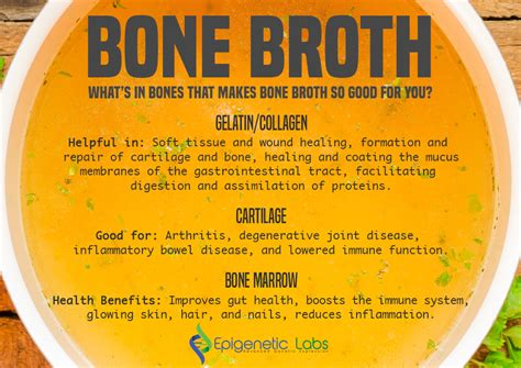 dr mcfarlen s bone broth diet for pets simple and soulful superfood nutrition for your pet weight loss and anti inflammatory paleo and joint health support books bone broth nutrition benefits nutrition ftempo