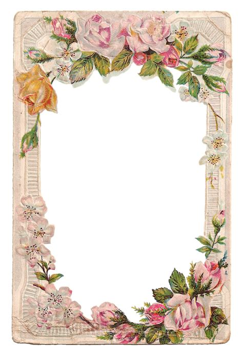 pin  candace hawkins  frames frame clipart flower