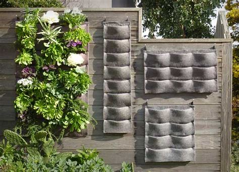 Vertical Wall Gardens Www Homegrown Org 187 Archive Plants On Walls An Easy