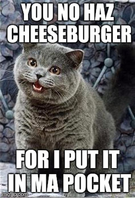 Cheezburger Meme Creator - i can has cheezburger cat imgflip