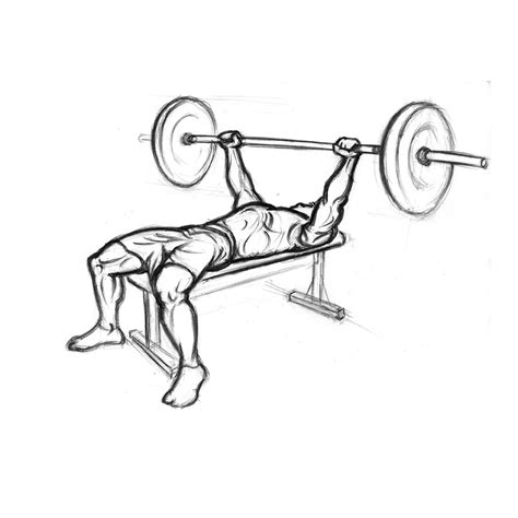 flat bench form bench press with barbell