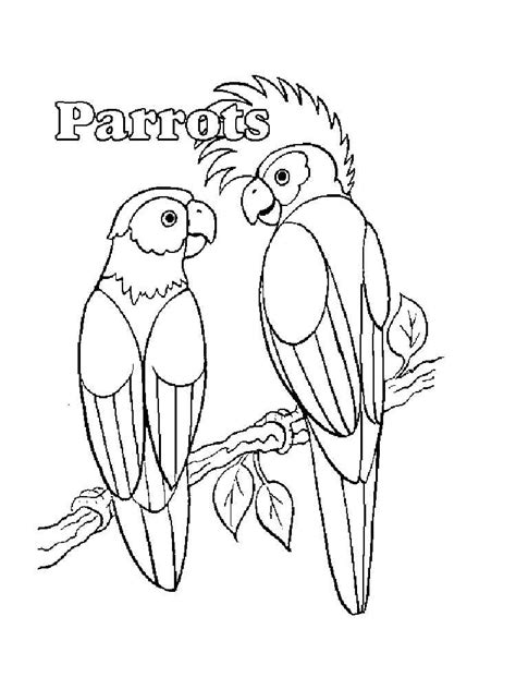 parrot coloring page parrot coloring pages and print parrot coloring