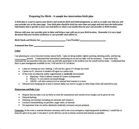 one page birth plan template sle plans doc 22 sle birth plan templates pdf word apple pages