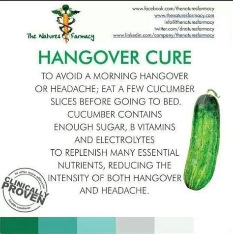 Detox Hangover Cure by 17 Best Images About Hangovers On Detox