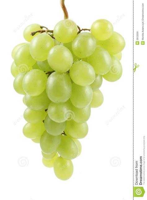 imagenes de uvas en dibujo uvas verdes im 225 genes de archivo libres de regal 237 as