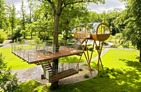 treehouse living baumraum s world of living tree house sits on spider s