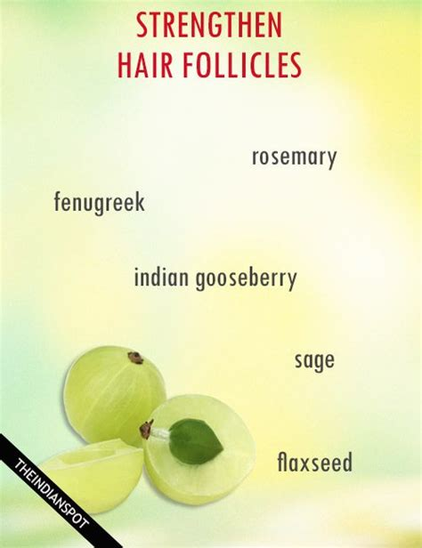 how to strengthen hair follicles in females over 40 strengthen hair follicles naturally we strengthen hair