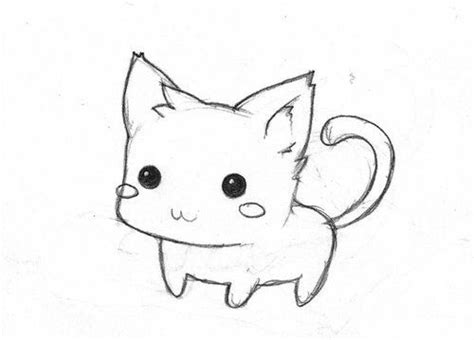 cat easy 17 best ideas about cat drawing on cat