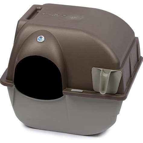 Cat Litter Box Otg Medium peacock cichlid medium petco