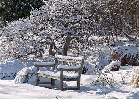 Winter Garden by Winter Journey Your Mind S Winter Garden Spirituality