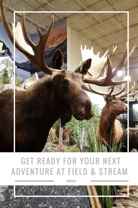 Get Travel Ready For Your Next Vacation by Get Ready For Your Next Adventure At Field