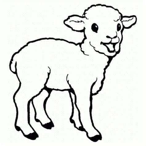 dibujo de ovejita  colorear dibujos infantiles de