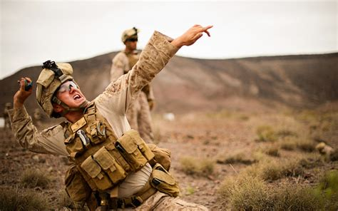 marine throws puppy 37 extraordinary photos of the u s marine corps in