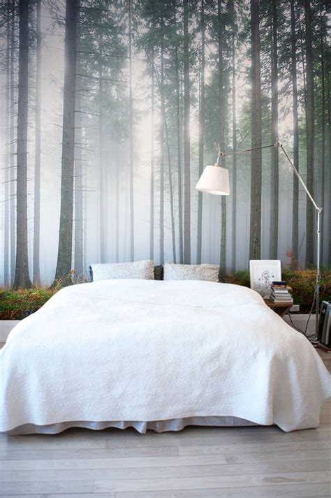 forest wallpapers   breathe life   home murals wallpaper