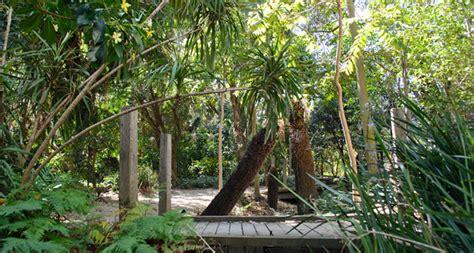 rainforest garden clayton cus monash university