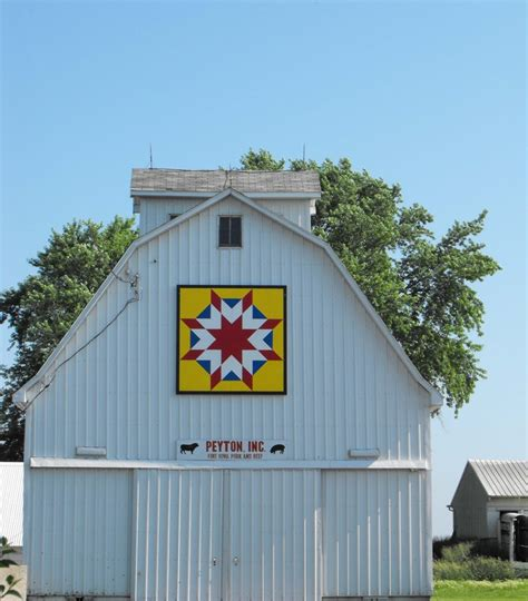 Suzi Parron Barn Quilts by Iowa The Posy Collection
