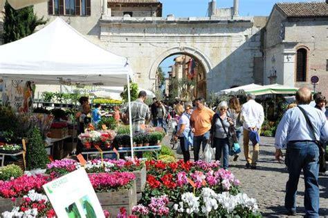 ufficio turismo fano fano portale cultura turismo eventi festa dei fiori