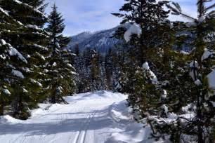 Cabin Creek Nordic Ski Area by Cabin Creek Nordic Ski Area Cross Country Skiing In