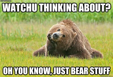Bear Stuff Meme - watchu thinking about oh you know just bear stuff misc