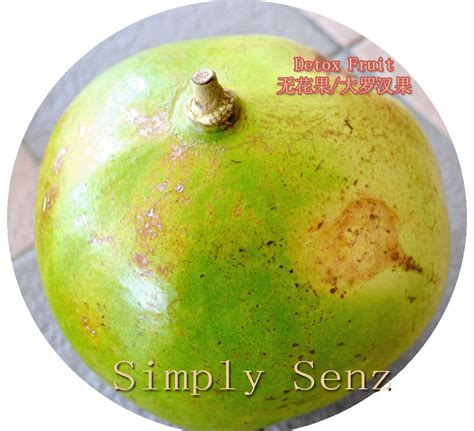 Detox Fruit Asian by Simply Senz Useful Home Plant Medicinal Herbs For