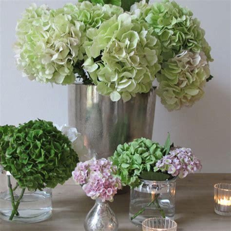 Tischdeko Hochzeit Gold Weiß by Hortensien Tischdeko Kaufen Hortensien Die Perfekte