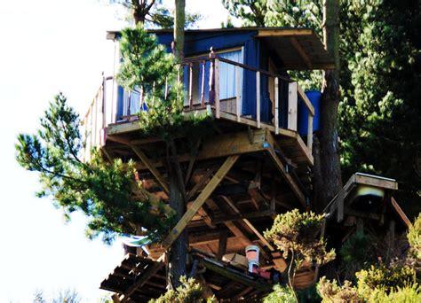 jono williams the best hut by jono williams 171 inhabitat green design