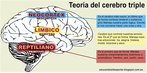 jurgen klaric edad educando el despertar el cerebro emocional en los ni 241 os