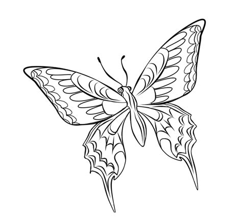 Batik Kupu Kupu Batterflay mewarnai gambar kupu kupu alamendah s