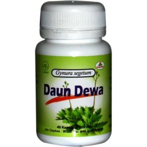 Obat Herbal Insani kapsul daun dewa herbal insani cakcipgresik manfaat