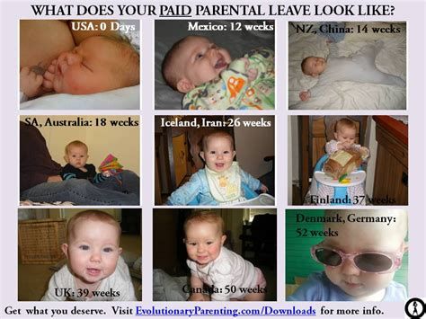 Maternity Memes - policy maternity leave matters evolutionary parenting