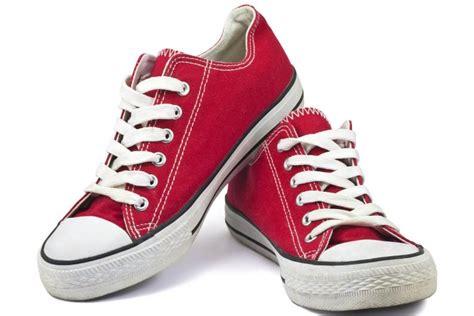 imagenes de zapatillas perronas im 225 genes las mejores im 225 genes de la red page 107