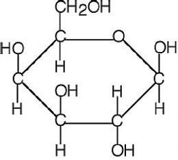 carbohydrates molecule carbohydrates part one
