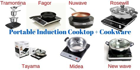 induction cooking tricks 7 portable induction cooktops with free cookware pan set