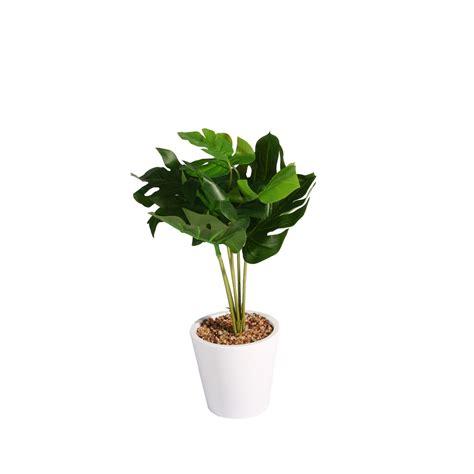 vaso di plastica pianta decorativa di plastica con vaso palm piante