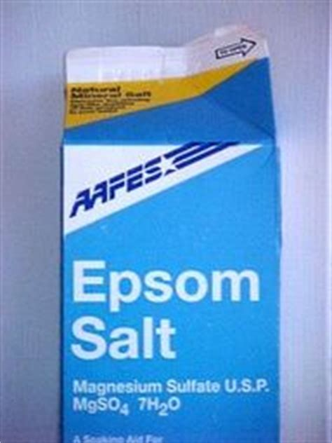 epsom salt for garden pests 17 best images about gardening pests on