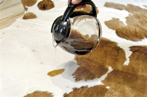 cleaning cowhide rug cleaning care for cowhide rugs