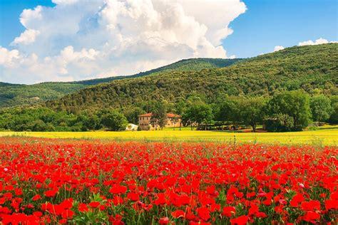hill towns  tuscany macs adventure