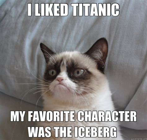 Grimpy Cat Meme - i liked titanic my favorite character was the iceberg