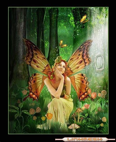 imagenes mariposas tristes imagenes de mariposas taringa