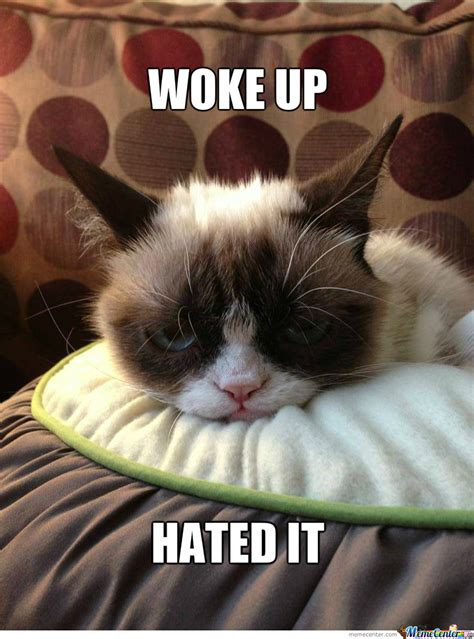Grumpy Cat Good Morning Meme - grumpy morning quotes quotesgram
