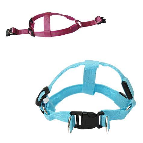 dog leash with light dog puppy safety led glow flashing light belt leash tether