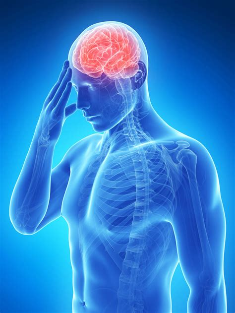 a stroke stroke recovery in mice improved by ambien news center stanford medicine
