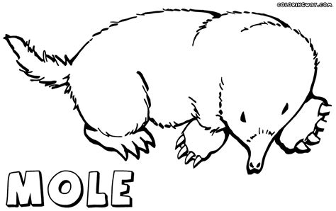 mole coloring pages coloring pages to download and print