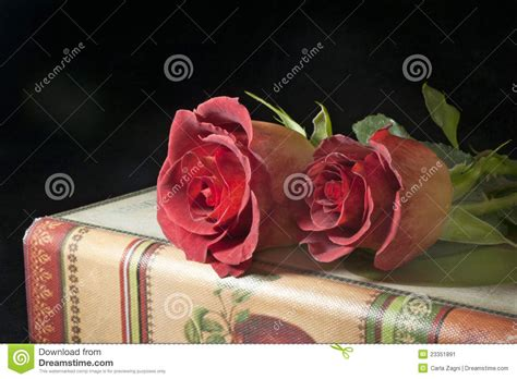 roses books roses and antique books stock image image 23351891