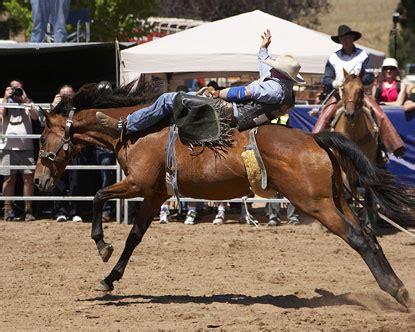 dallas tx rodeo rodeo  dallas dallas fort worth rodeo
