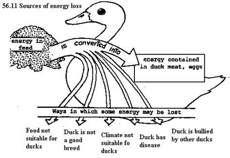 code3 605 wiring diagram